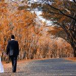 catalogos Vestidos de boda y los accesorios 2019